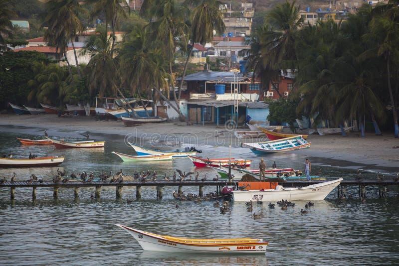 Красочные деревянные шлюпки fisher поставленные на якорь в заливе острословия Pampatar стоковые изображения rf
