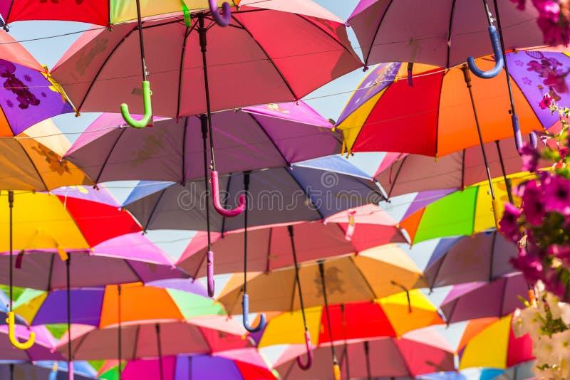 Красочные зонтики в саде чуда Дубай стоковая фотография rf
