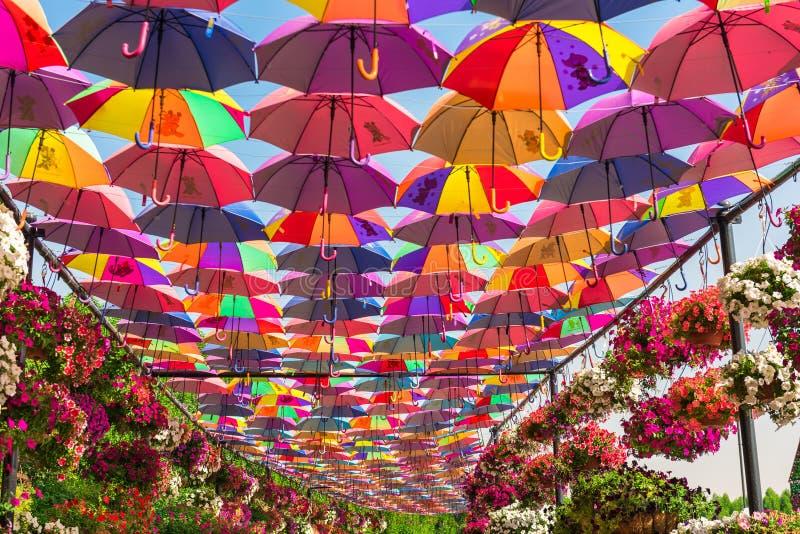 Красочные зонтики в саде чуда Дубай стоковые изображения