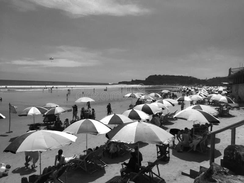 Красочные зонтики на пляже с чувством лета океана в черно-белом стоковые изображения rf