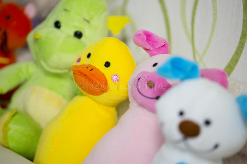Красочные игрушки: собака, свинья, утка стоковые фотографии rf