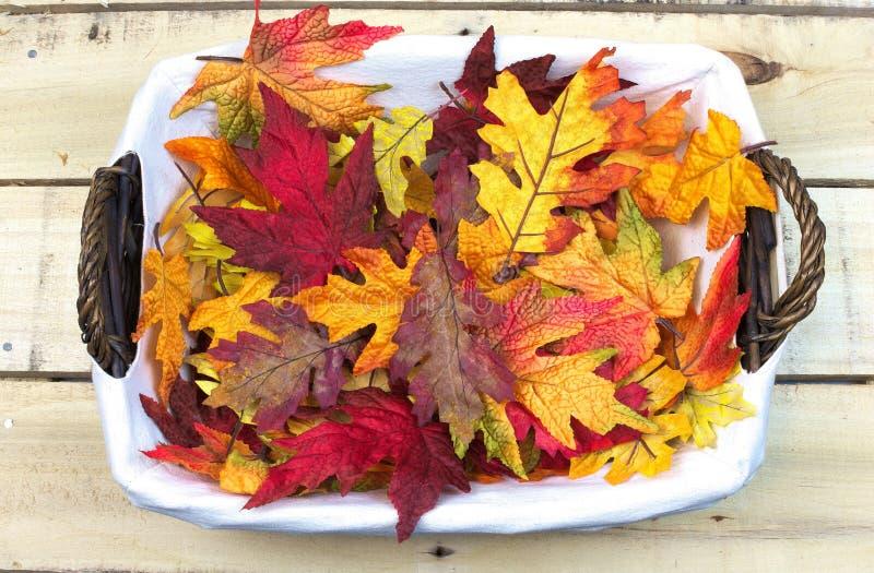 Красочные листья падения в плетеной корзине стоковое фото rf