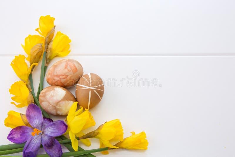 Красочные пасхальные яйца и желтые daffodils стоковые фотографии rf