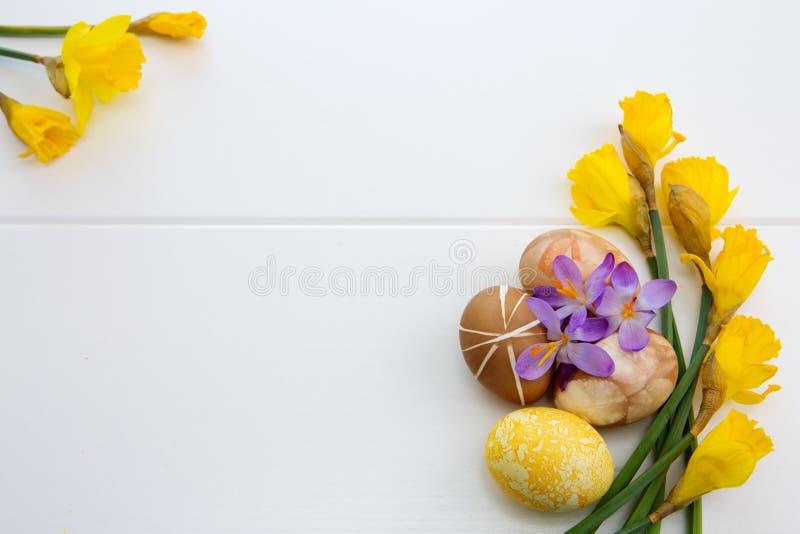 Красочные пасхальные яйца и желтые daffodils стоковое фото rf