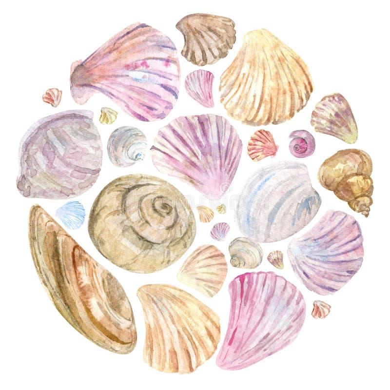 Красочные раковины акварели в круглом составе бесплатная иллюстрация