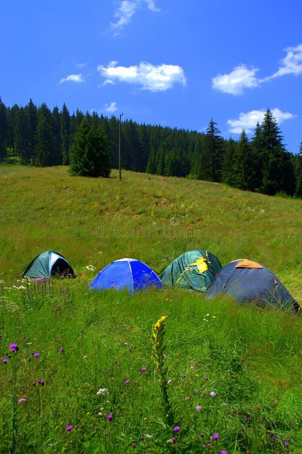 Красочные располагаясь лагерем шатры на луге горы стоковые изображения