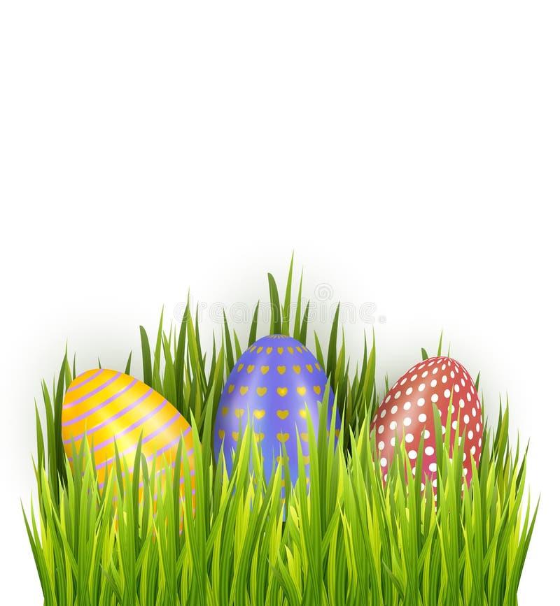 Красочные украшенные пасхальные яйца в свежей зеленой траве изолированной на белой предпосылке Горизонтальные украшения знамени п бесплатная иллюстрация