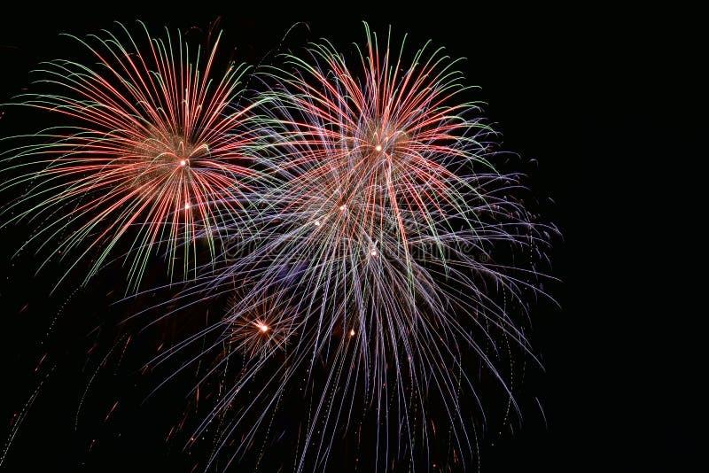Красочные фейерверки на ночном небе bkack стоковые изображения