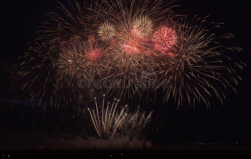 Красочные фейерверки на черной предпосылке неба стоковые изображения