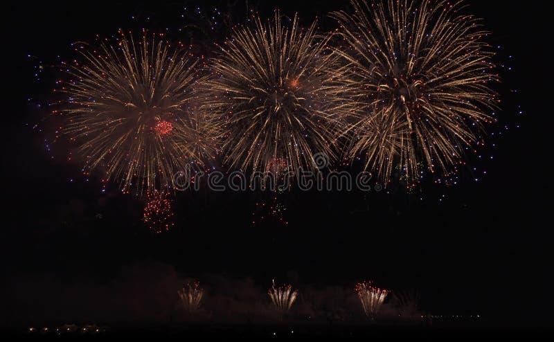 Красочные фейерверки на черной предпосылке неба стоковые изображения rf