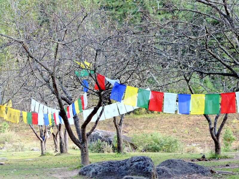 Красочные флаги на пути к Paro Taktsang Бутана стоковое фото rf