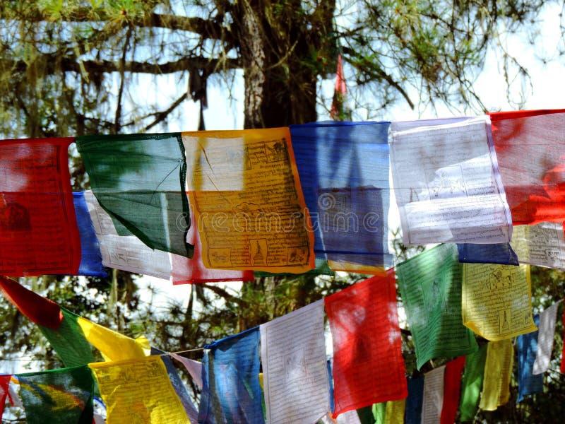 Красочные флаги на пути к Paro Taktsang Бутана стоковые фото