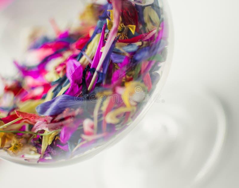 Красочные цветки в стекле, много цветков в много цветов в ясном стекле, взгляде конца-вверх пестротканых цветков стоковые фото