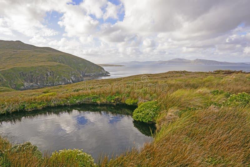 Красочный ландшафт на удаленном острове стоковое изображение
