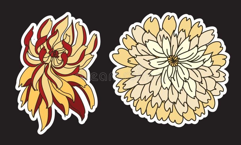 Красочный вектор цветка хризантемы Китайская татуировка цветка Цветок Chrysanth для татуировки иллюстрация вектора
