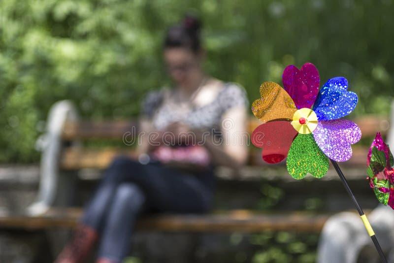 Красочный ветер pinwheel стоковая фотография