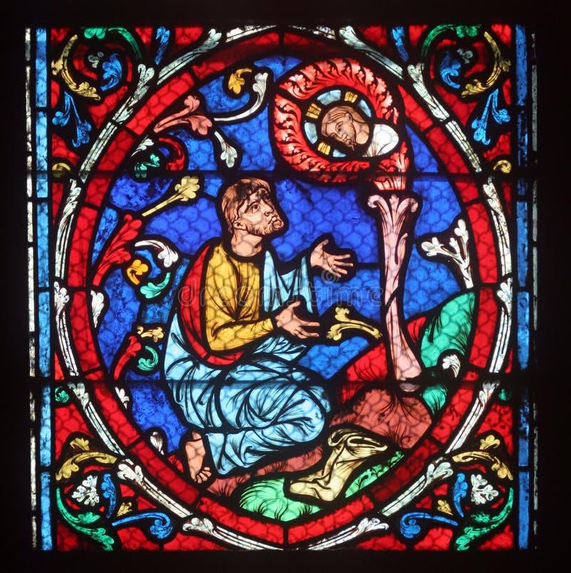 Красочный витраж в соборе Нотр-Дам de Париже стоковое изображение rf
