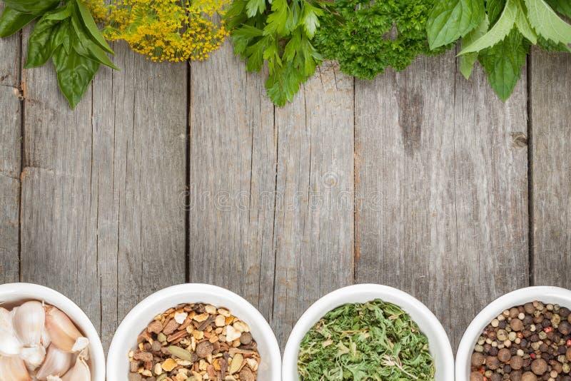 Красочный выбор трав и специй стоковая фотография rf