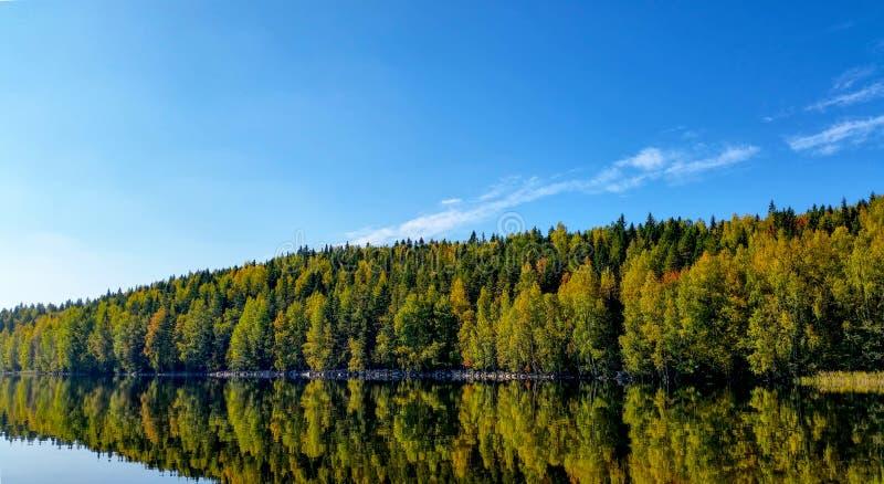 Красочный лес осени отраженный от озера стоковое фото rf