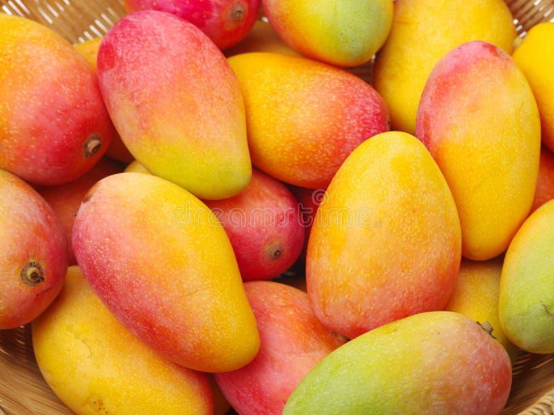 Красочный зрелого манго приносить в ruits корзины в корзине стоковые изображения rf