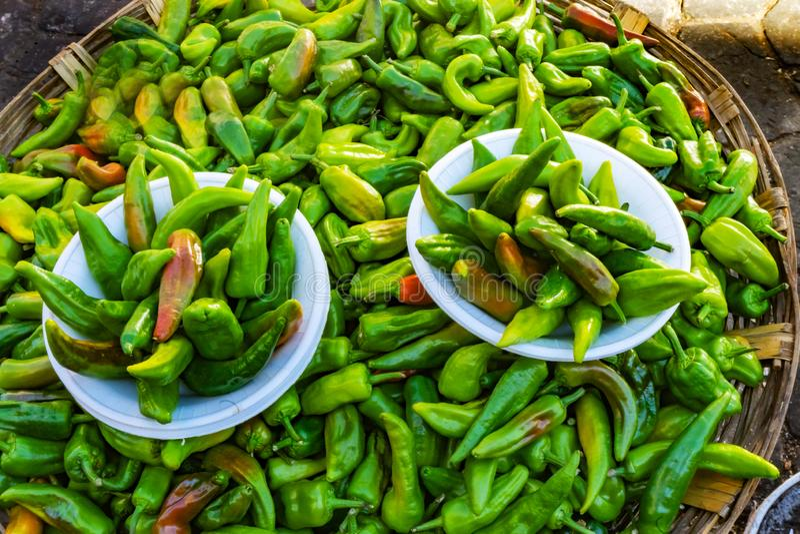 Красочный мексиканский зеленый перец Оахака Juarez Мексика Чили Jalapeno стоковая фотография