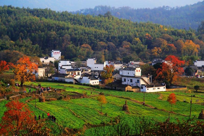 Красочный пейзаж осени в Tachuan стоковое фото rf