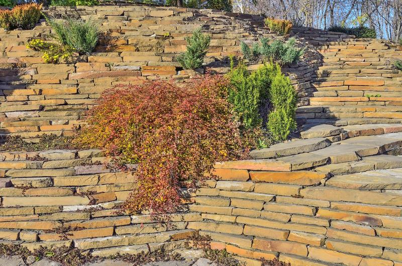 Красочный сад rockery осени на ярком солнечном дне стоковые изображения rf