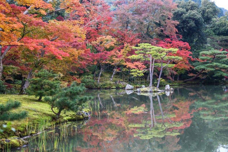 Download Красочный сезона стоковое фото. изображение насчитывающей вода - 81803654