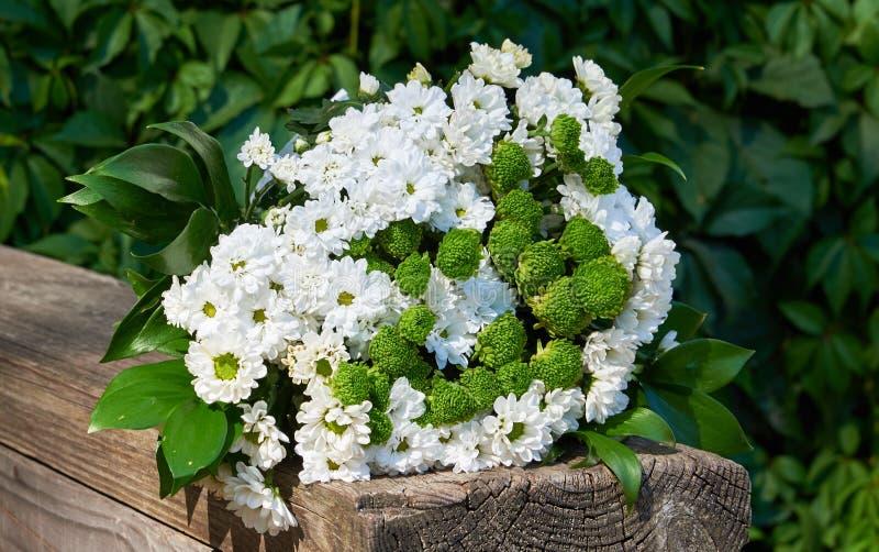 Красочный состав цветка - букет белой декоративной маргаритки на естественной старой деревянной планке стоковое изображение