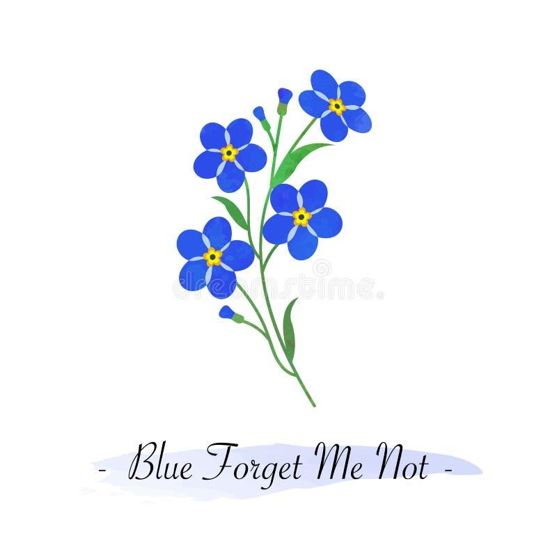 Красочный цветок голубой fo ботанического сада вектора текстуры акварели иллюстрация штока
