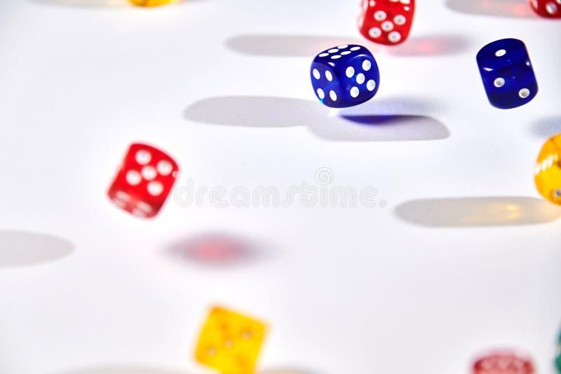 красочный dices в движении на белой предпосылке стоковая фотография