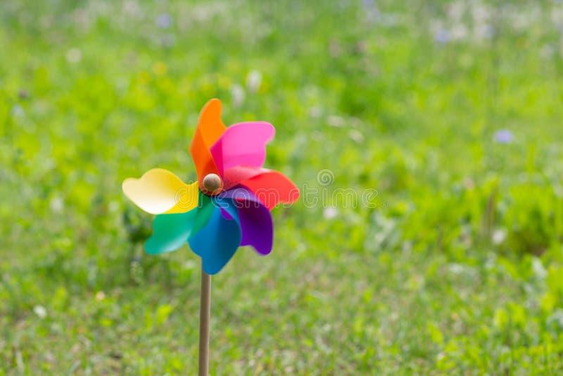 Красочный pinwheel на левой стороне съемки стоковые фотографии rf