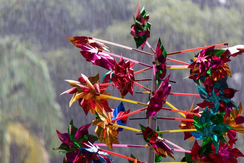 Красочный pinwheel с предпосылкой деревьев во время дождя стоковое изображение rf