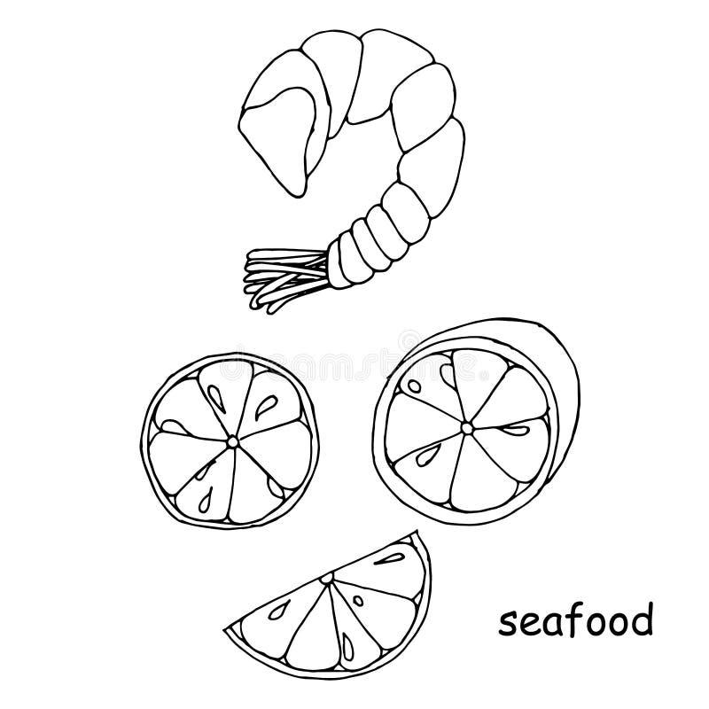 Креветка морепродуктов, эскиз куска лимона креветки, объекты изолированные на белизне иллюстрация вектора