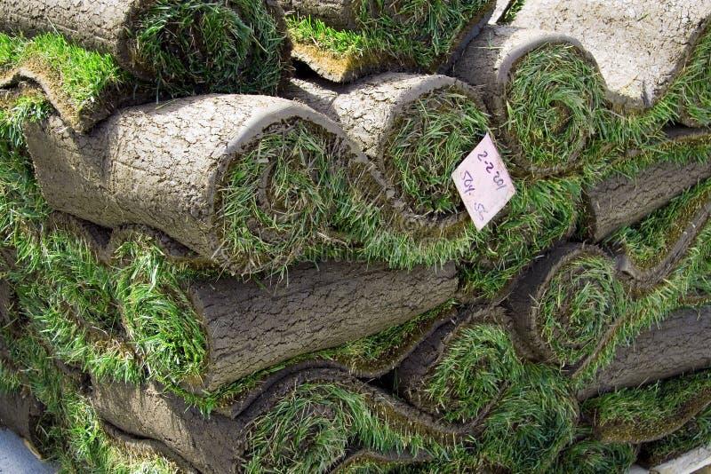 крены кучи травы стоковое изображение rf