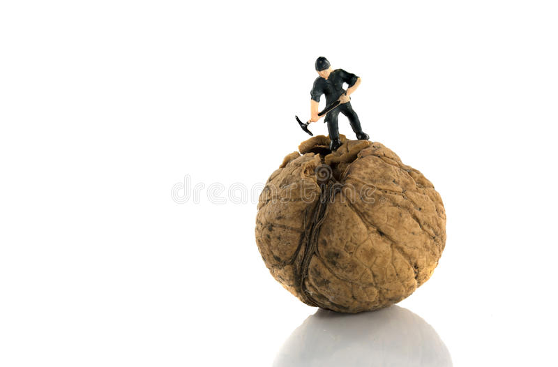 Крепко треснуть грецкий орех стоковая фотография