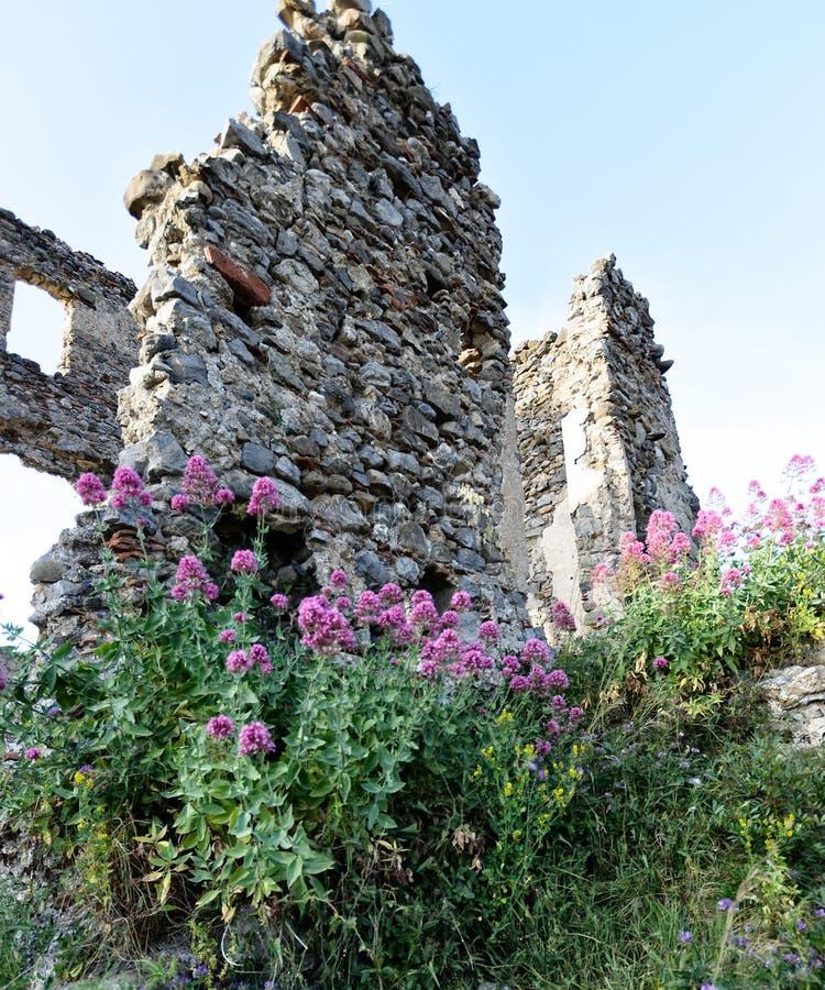 Крепость тринадцатого века в городе Santa Maria del Cedro, Италии стоковые изображения rf