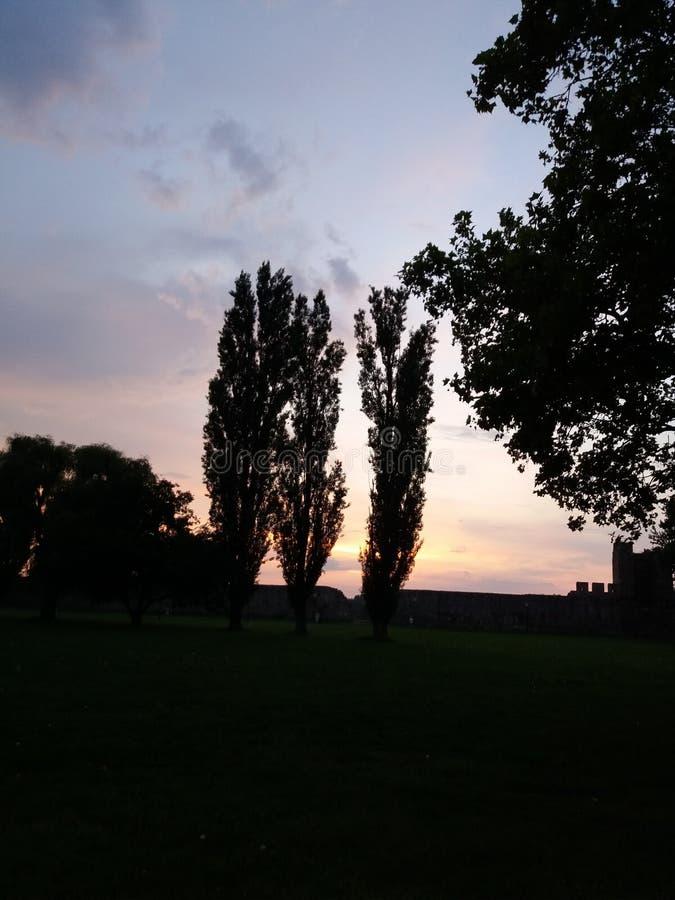 Крепость Smederevo стоковая фотография