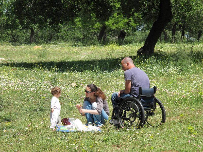 кресло-коляска пикника