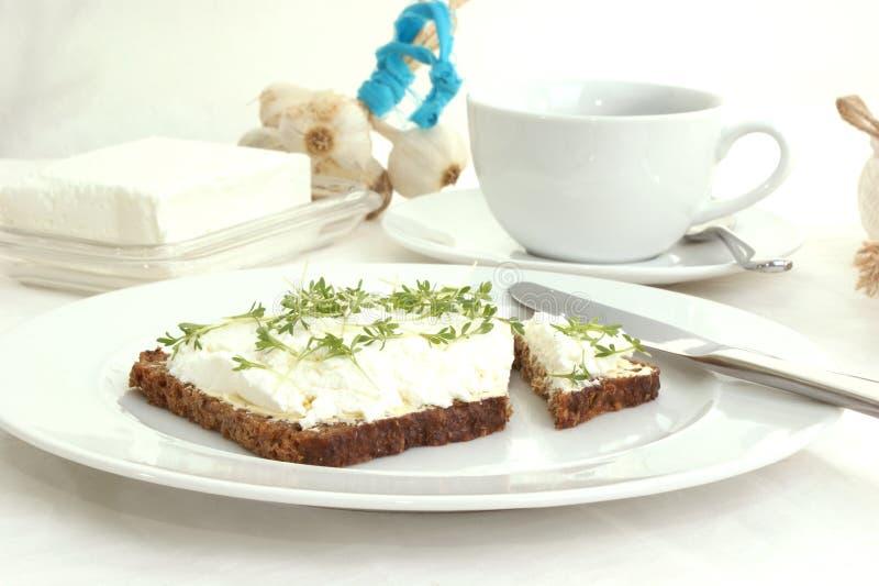 кресс-салат коттеджа сыра стоковая фотография rf