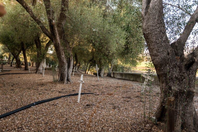 Кресты на кладбище миссии Сан-Хуана Bautista, Калифорния, США стоковая фотография rf
