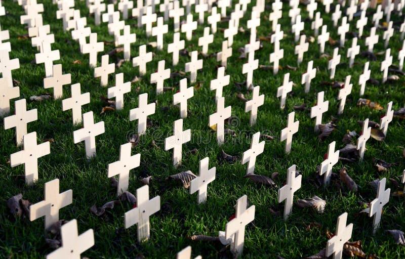 Кресты сада день памяти погибших в первую и вторую мировые войны стоковые изображения
