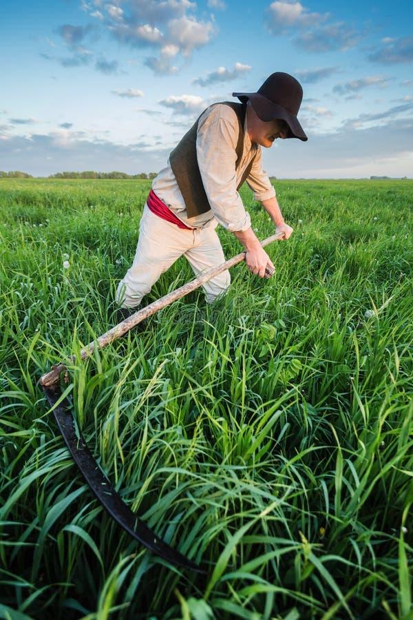 Крестьянин косит траву в поле стоковая фотография