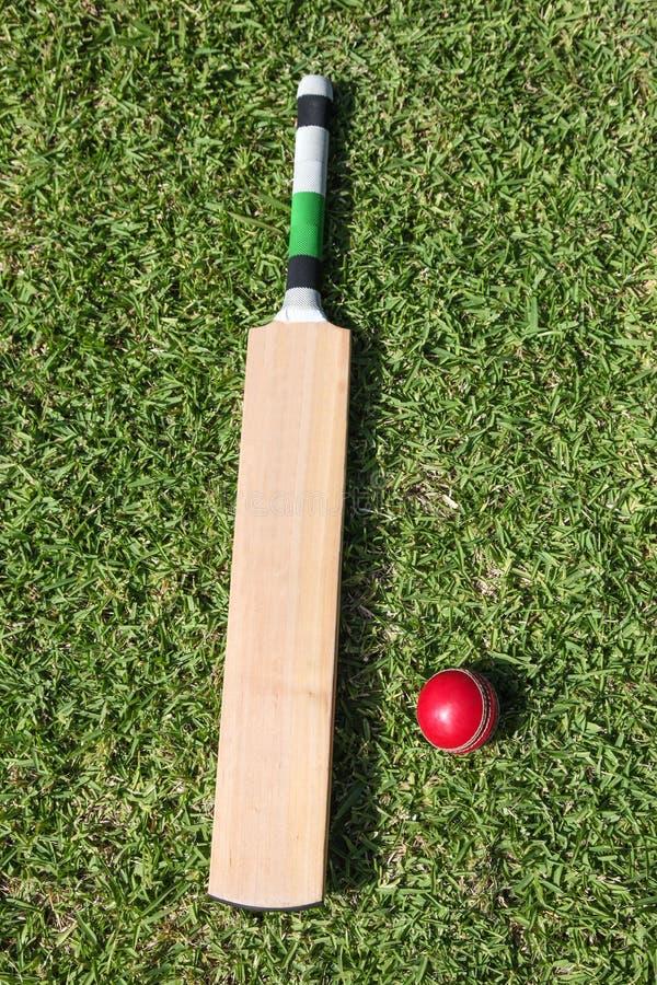 Крикетная бита и шарик на зеленой траве стоковое фото rf