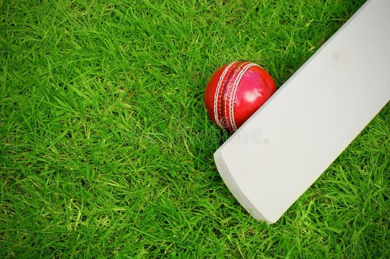 Крикетная бита и шарик стоковые фотографии rf