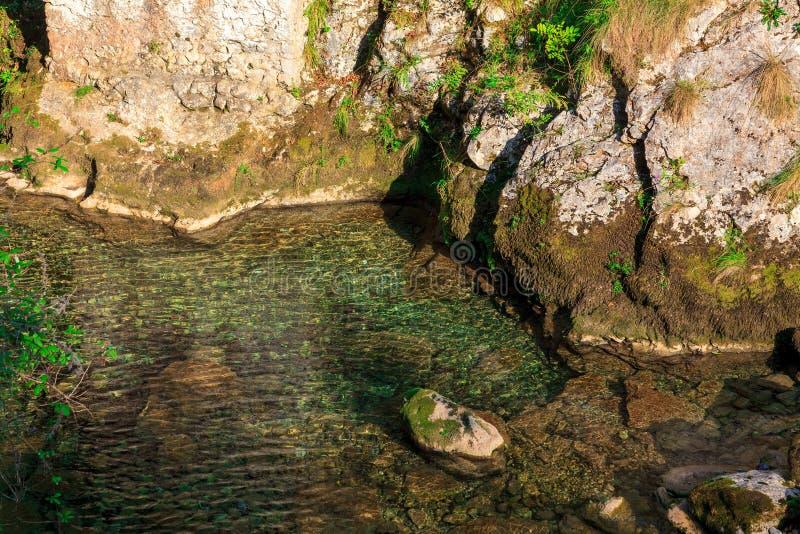 Кристально ясные воды реки горы приходя от таяния Национальный парк Picos de Европы стоковые фото