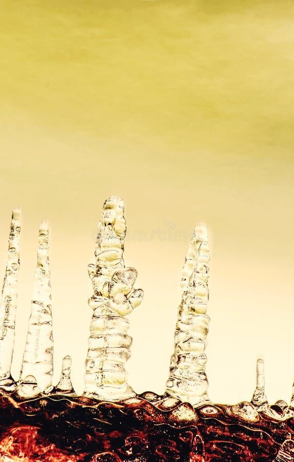 Кристально ясные сосульки воды вручают на дереве над потоком стоковая фотография