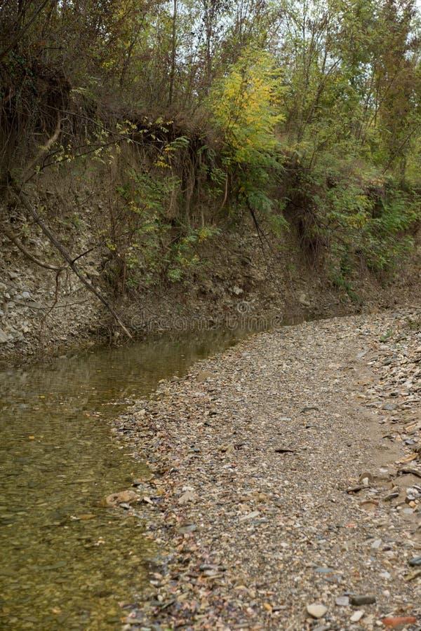 Кричащее река стоковые изображения rf