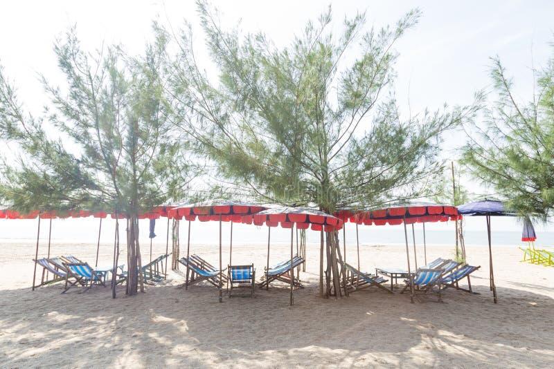 Кровати и зонтики на пляже стоковое фото rf
