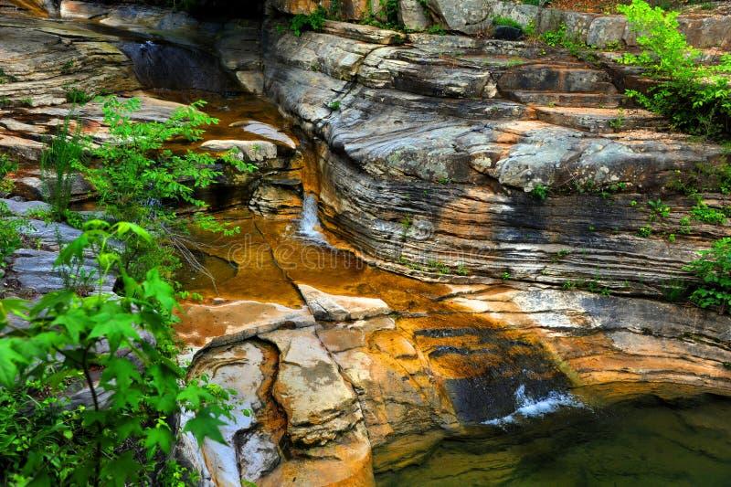 Кровать потока Арканзаса стоковые изображения rf